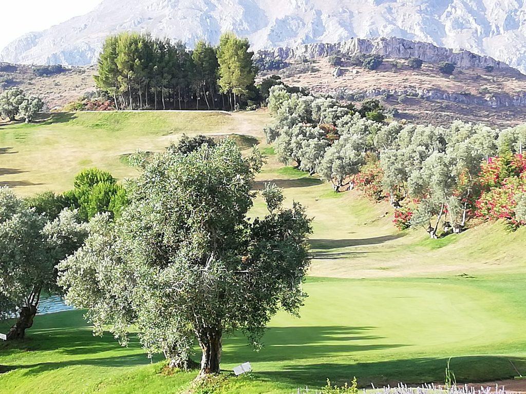 Golf entre monts et vallées, beau à jouer, magnifique à admirer.